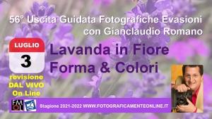 56° Uscita Guidata: Lavanda in Fiore, Forme & Colori